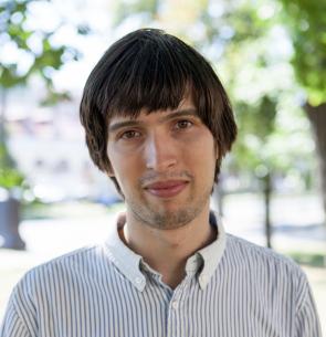 Dmitri A. Meleshko